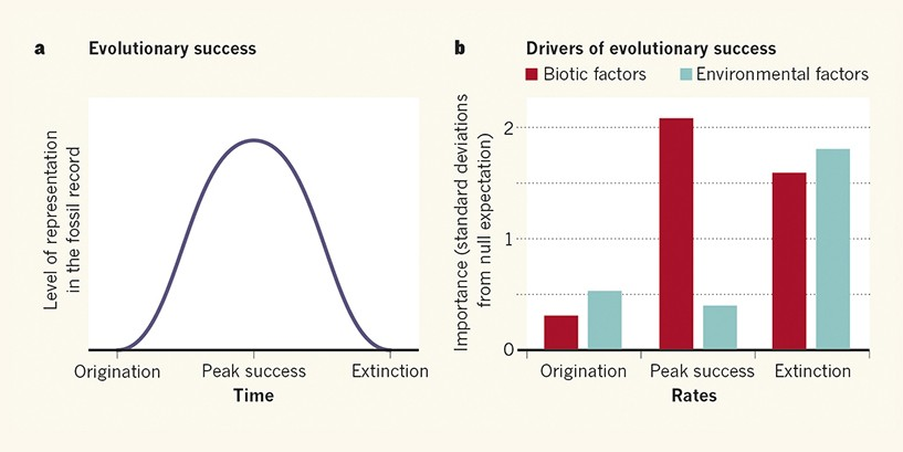 A tip of the hat to evolutionary change