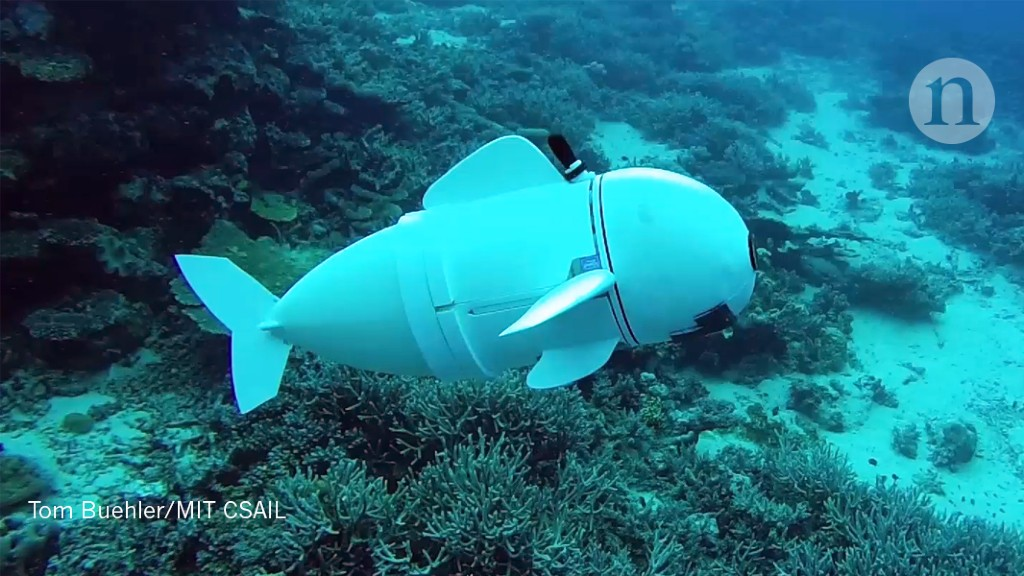 A robotic fish that fits in at school - Nature.com