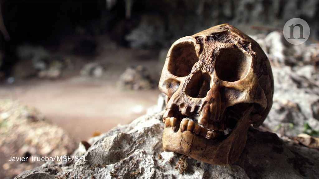 A single island spawned two populations of miniature humans