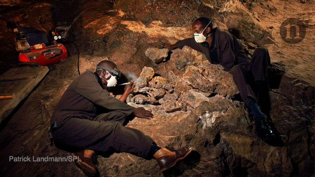 'Little Foot' hominin emerges from stone after millions of years