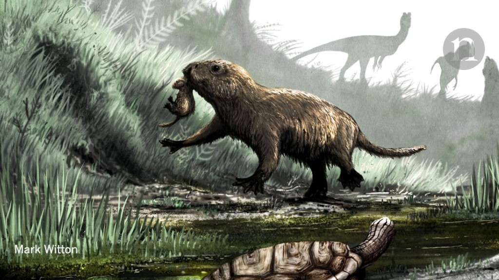 The eyes of mammals reveal a dark past