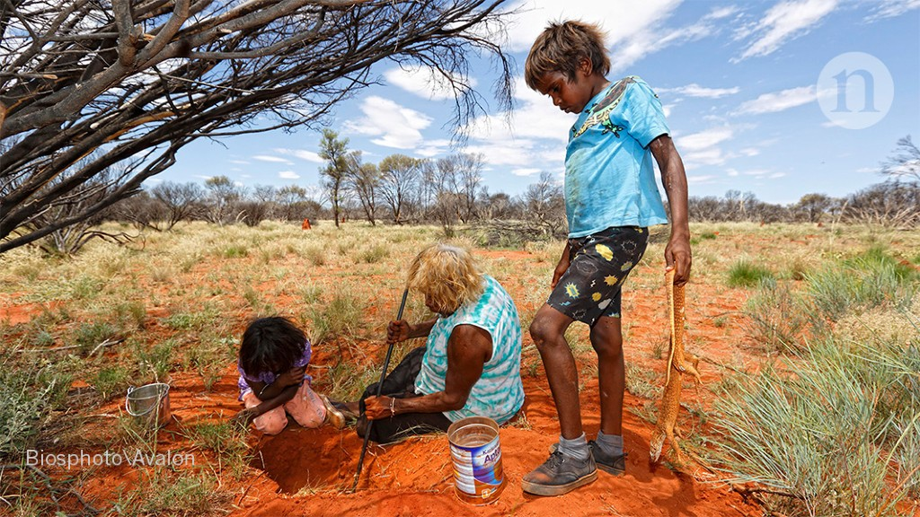 Trauma of Australia's Indigenous 'Stolen Generations' is still affecting children today