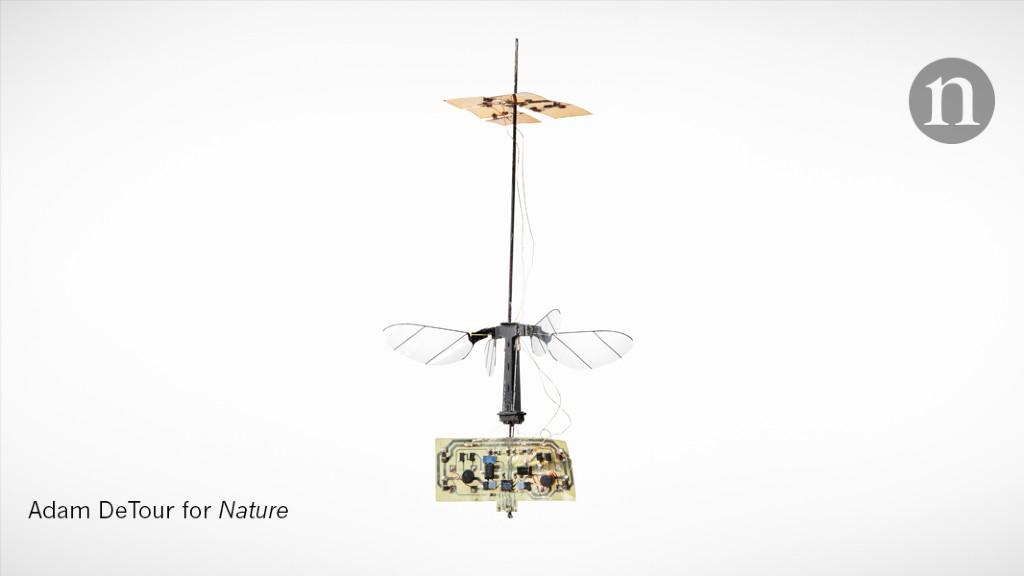 Flight of the RoboBee - Nature.com image