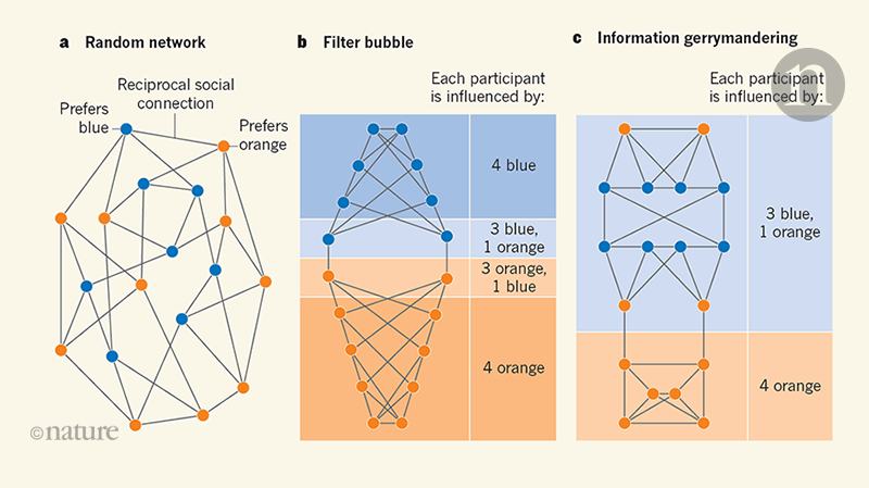Information gerrymandering in social networks skews collective decision-making