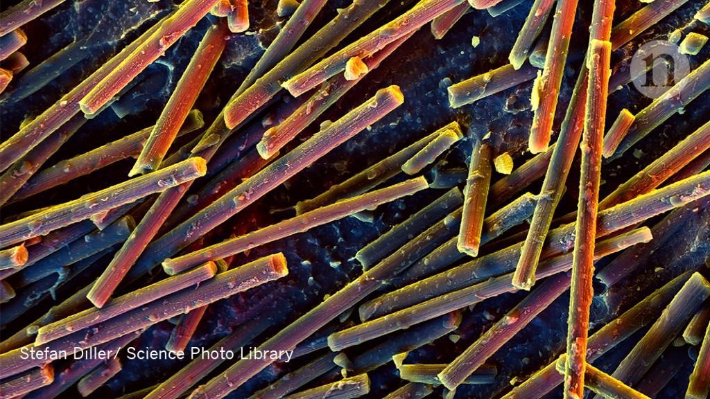 Biggest carbon-nanotube chip yet says 'Hello, World!'