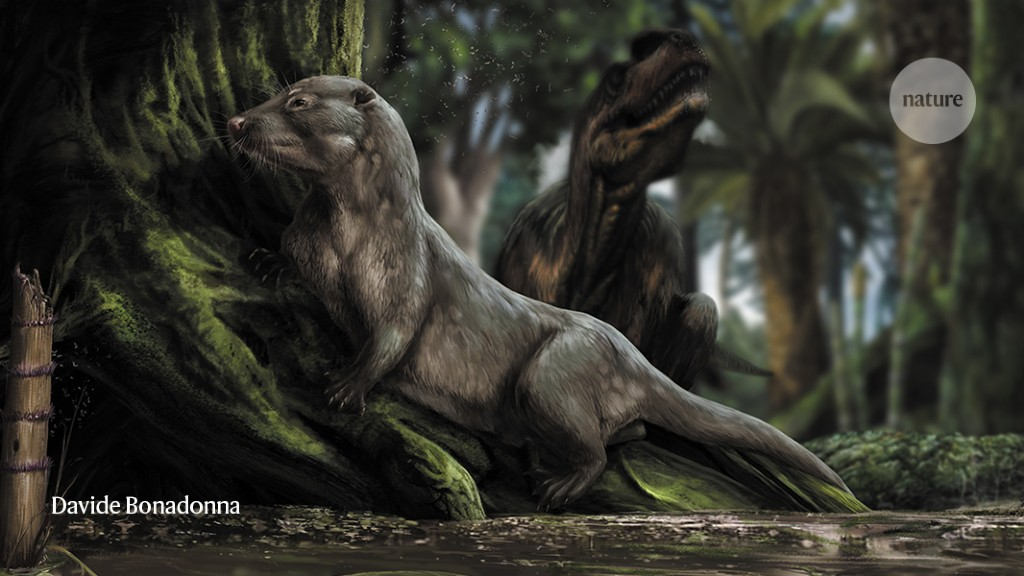 How The Earliest Mammals Thrived Alongside Dinosaurs