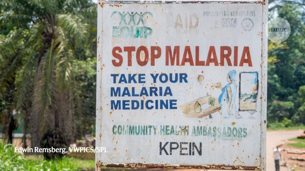 Malaria cases are falling worldwide