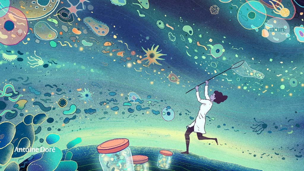 The hunt for a healthy microbiome