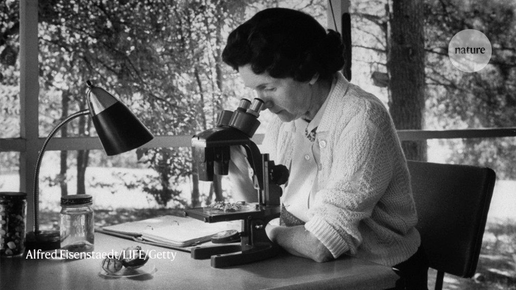 We need more researchers in Women's History Month