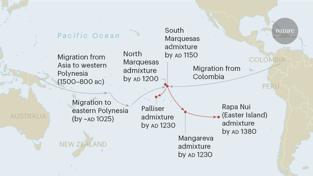 Native South Americans were early inhabitants of Polynesia