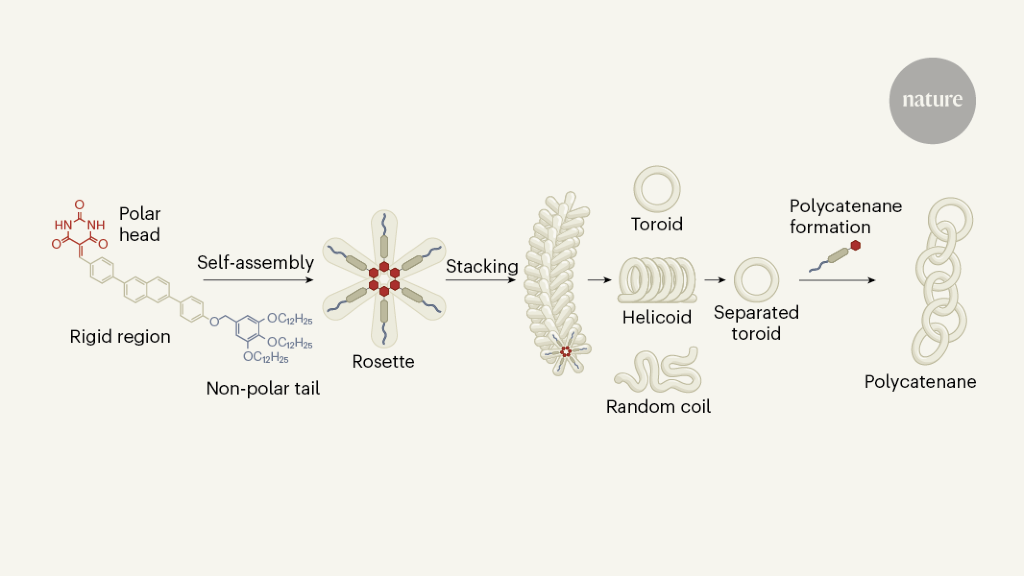 Simple molecules self-assemble into the links of a nanoscale chain - Nature.com