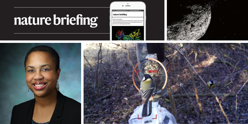 Daily briefing: Birdwatching artificial-intelligence system can recognize individuals thumbnail