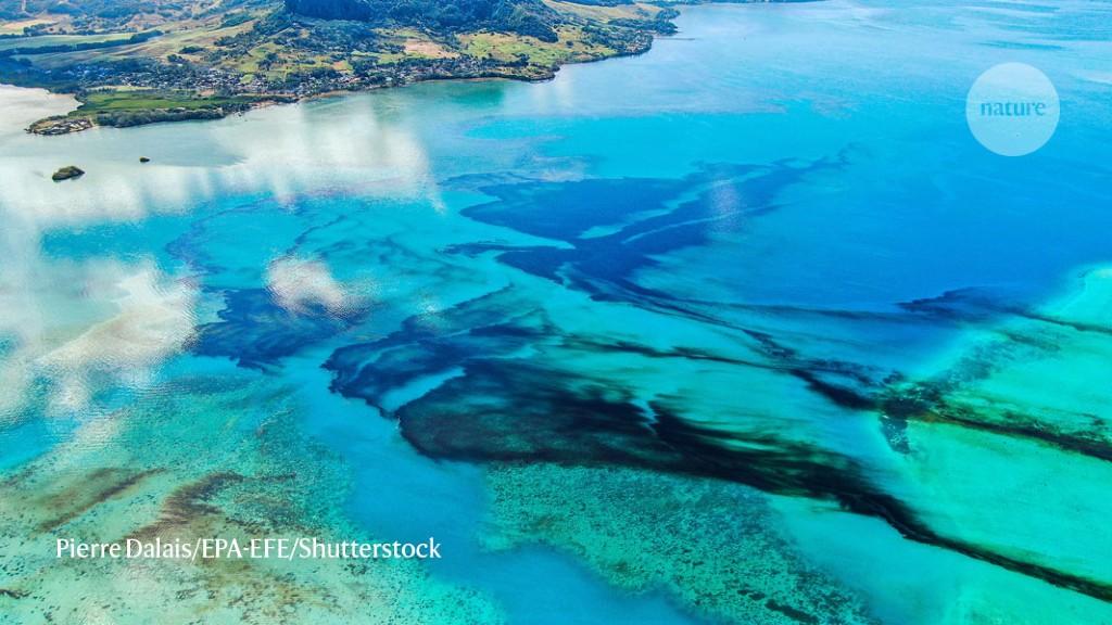 Mauritius East Beautiful Beaches: O Suveniruri Colectie de Color Fotografii Cu Legende (Paperback)