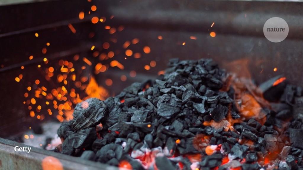 Microscopy illuminates charcoal's sketchy origins