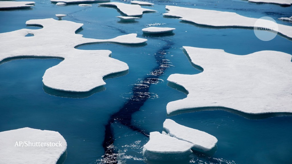 Arctic sea ice hits second-lowest level on record