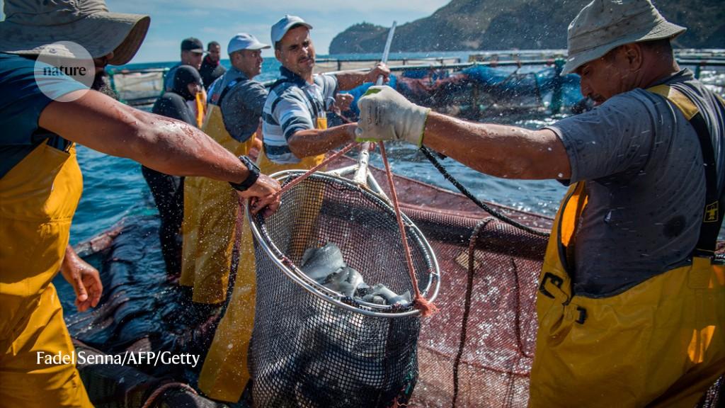 More than 100 aquatic-science societies sound climate alarm