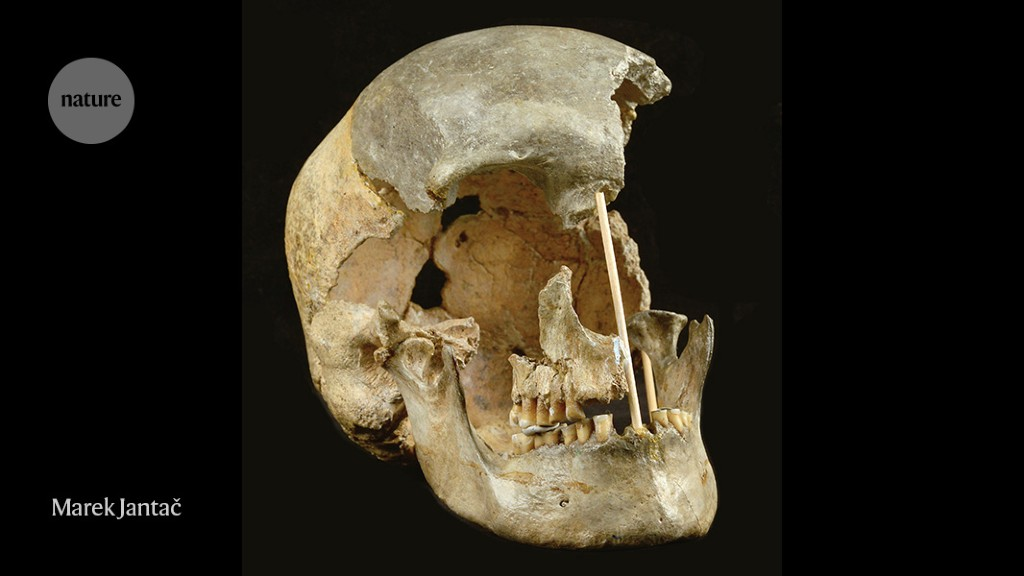 Ancient human lineages interbred commonly in Europe, as well as the Middle East.