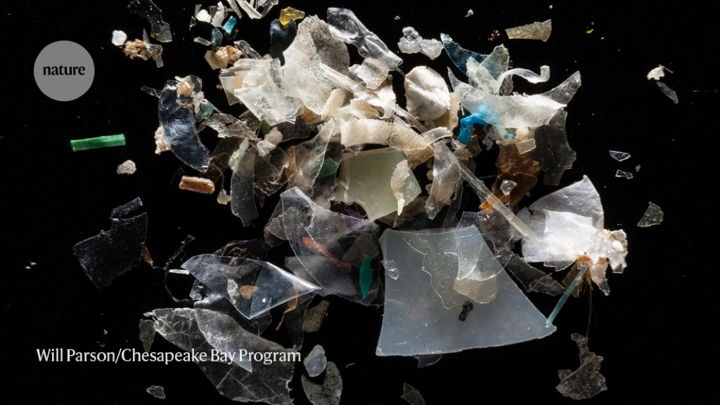 Microplastics are everywhere — but are they harmful? - Nature.com