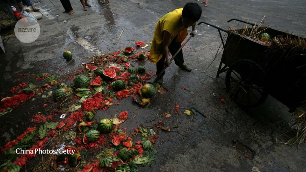 A worker sweeps up watermelons at a wholesale market in Chongqing, China. Waste from households accounts for only a small fraction of China's discar