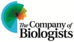 The Company of Biologists Ltd