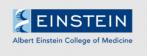 Albert Einstein College of Medicine (Einstein)