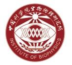 Institute of Biophysics (IBP), CAS