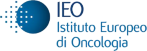 IRCCS European Institute of Oncology (IEO)