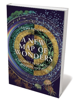 Book jacket for 'A New Map of Wonders'