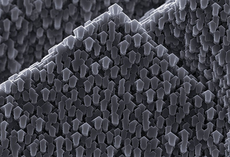 A scanning electron micrograph of a calcite crystal