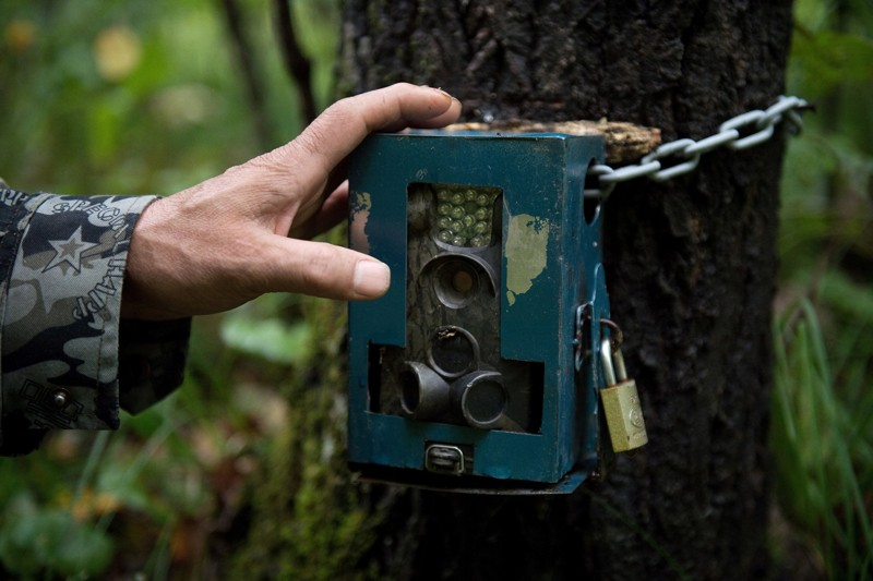 Wildlife tracking camera in China