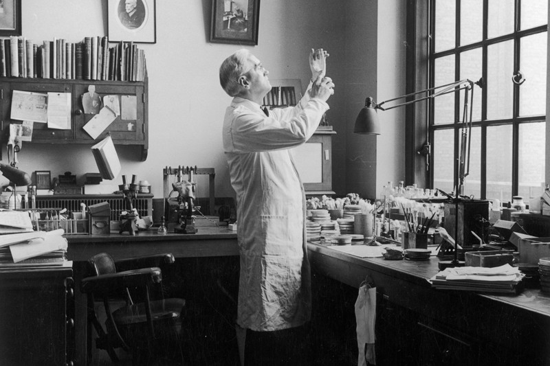 Alexander Fleming at work in his laboratory