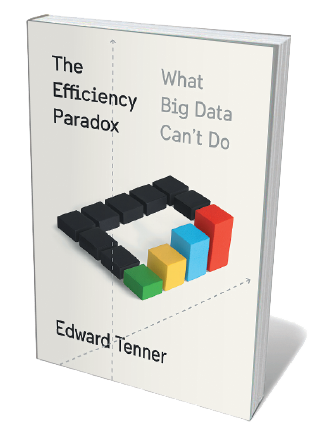 Book jacket for The Efficiency Paradox