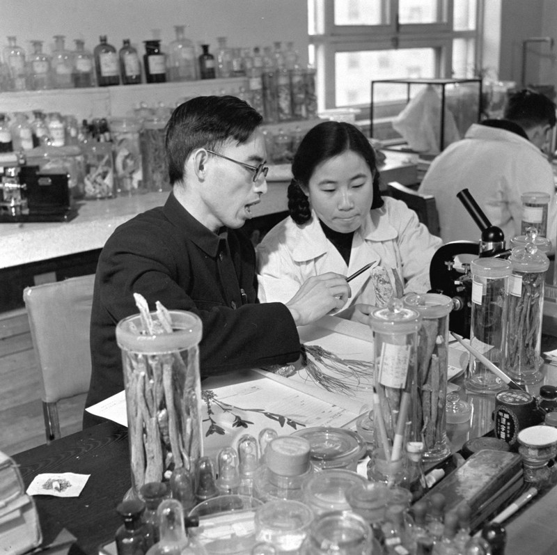 Tu Youyou studying traditional Chinese medicine with Lou Zhicen