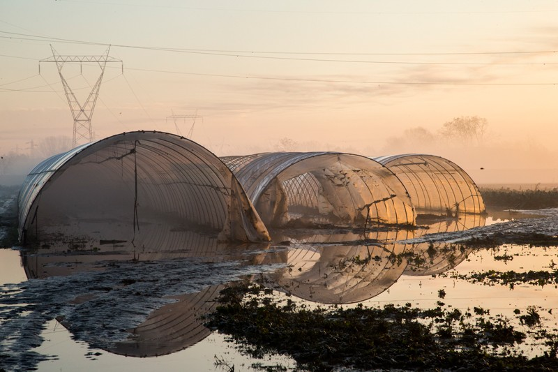 Greenhouses in the middle of flooded farmlands