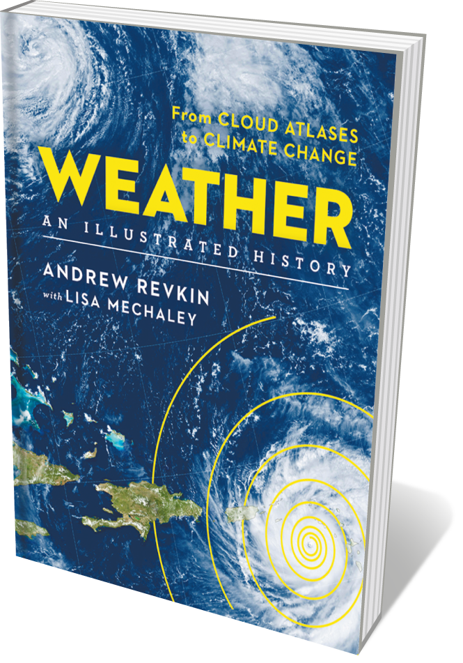 Book jacket 'Weather'