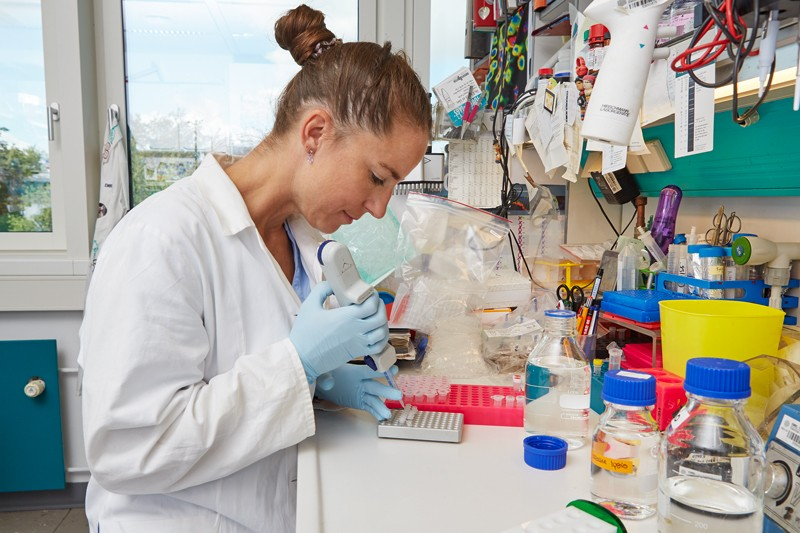 Dunja Ferring-Appel in the lab