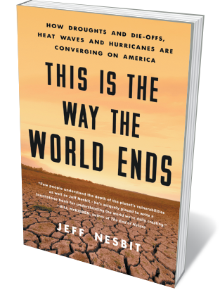 Book jacket 'This is the Way the World Ends'
