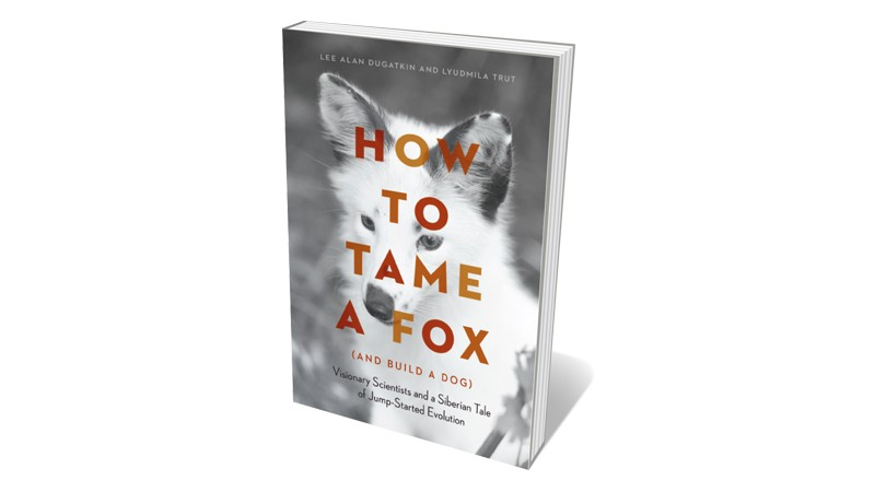 Books jacket 'How to Tame a Fox'