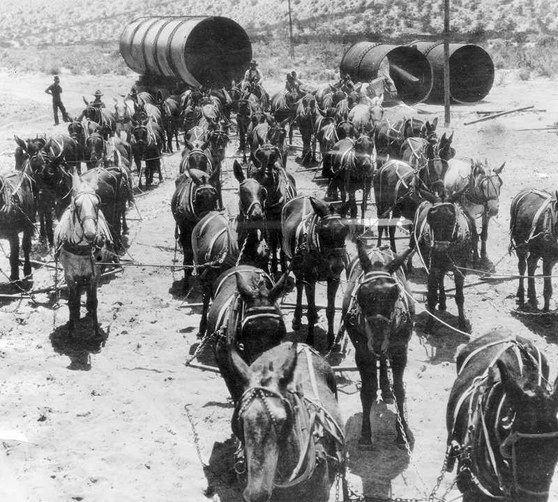 A 52-mule team hauling sections of Los Angeles Aqueduct pipe in 1912