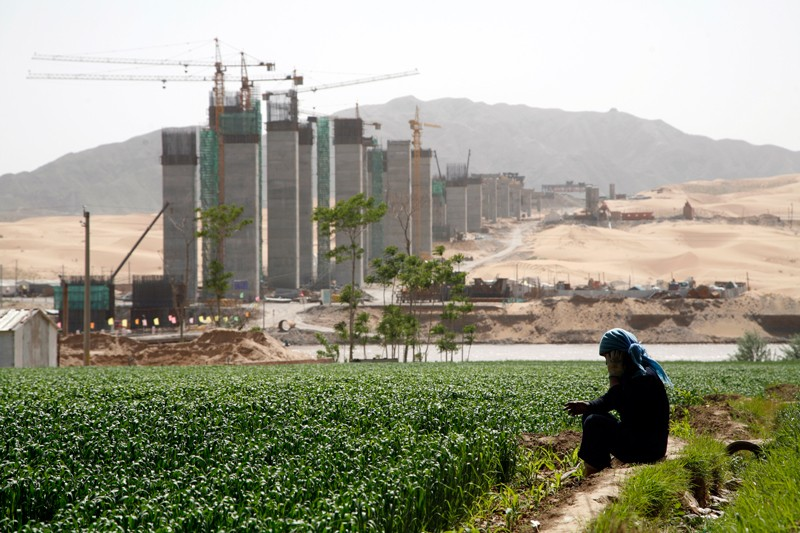 A woman works in a wheat field with a construction site in the background