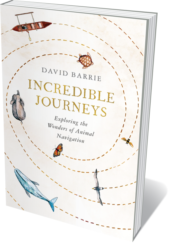 Cover of Incredible Journeys