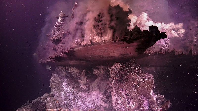 A hydrothermal vent field featuring numerous volcanic flanges