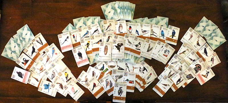 Wingspan game cards