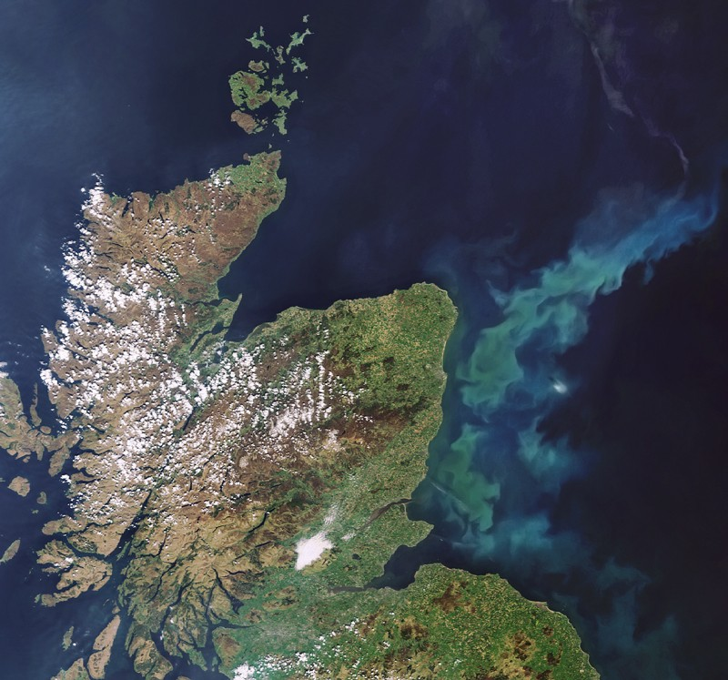 Satellite image of a phytoplankton bloom in the North Sea off the coast of eastern Scotland