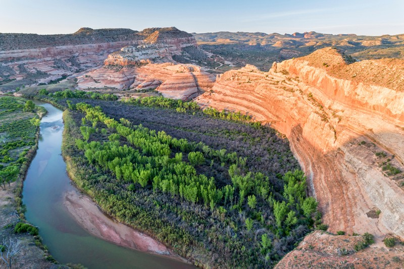 Trees grow along the bank of the Dolores River in Utah