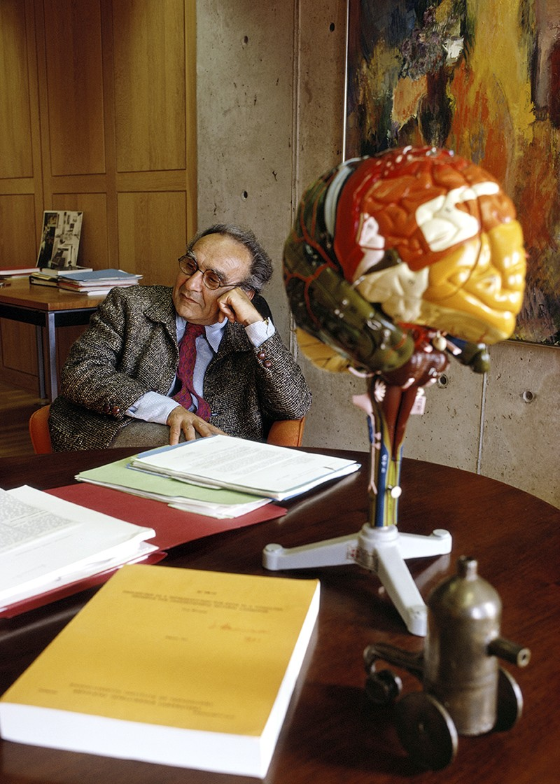 Jacob Bronowski at a desk covered in books. A multicoloured plastic model of a brain on a stand is in the foreground.