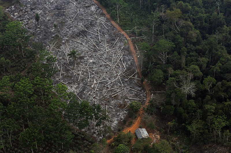 A deforested plot of the Amazon.