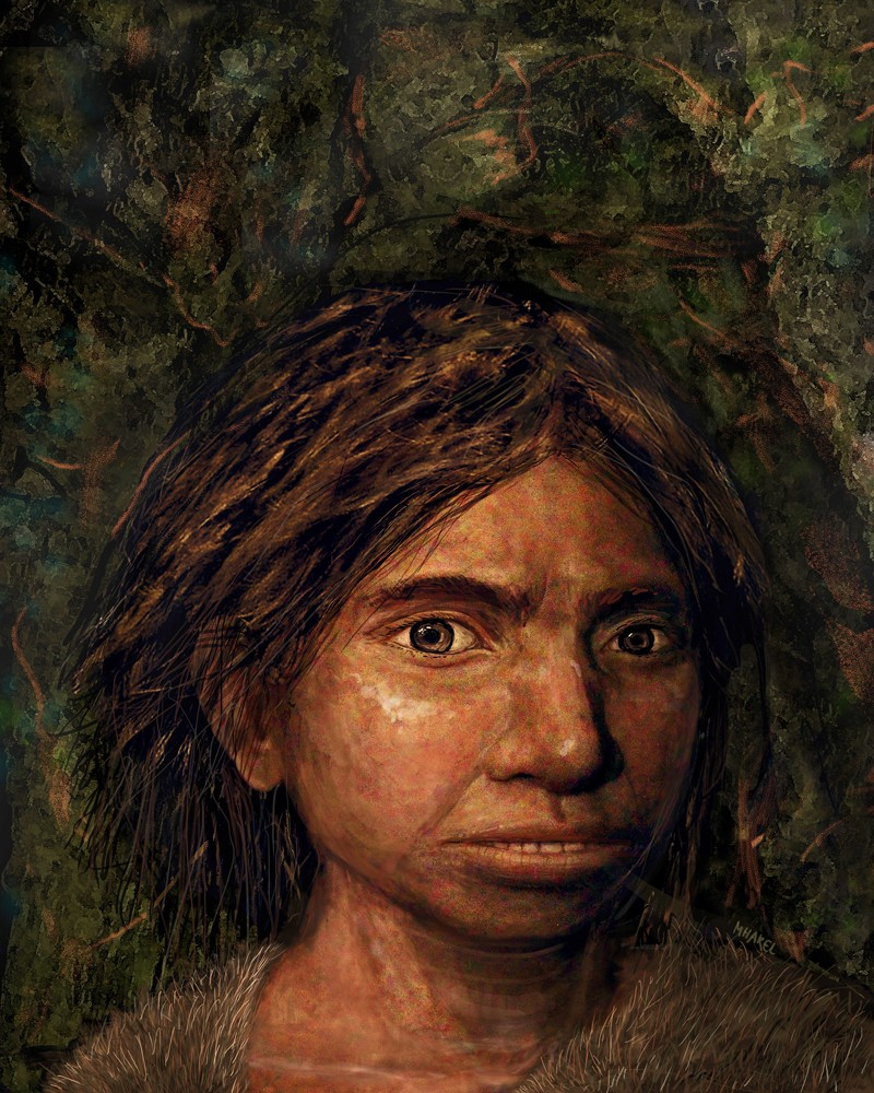 Image of a juvenile female Denisovan based on a skeletal profile reconstructed from ancient DNA methylation maps.