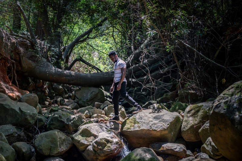 Grajevis Bakatunkanda, who has sickle cell anaemia, stands in Newlands Forest in Cape Town South Africa.