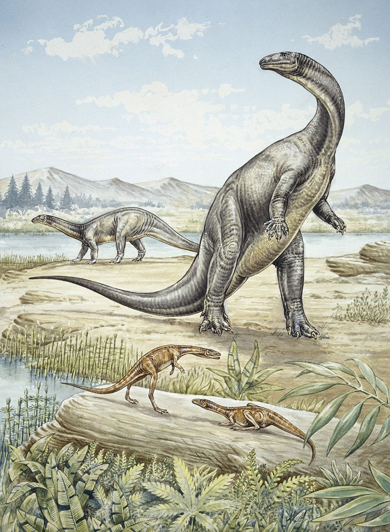 Illustration of Upper Triassic dinosaurs discovered in Southern Germany
